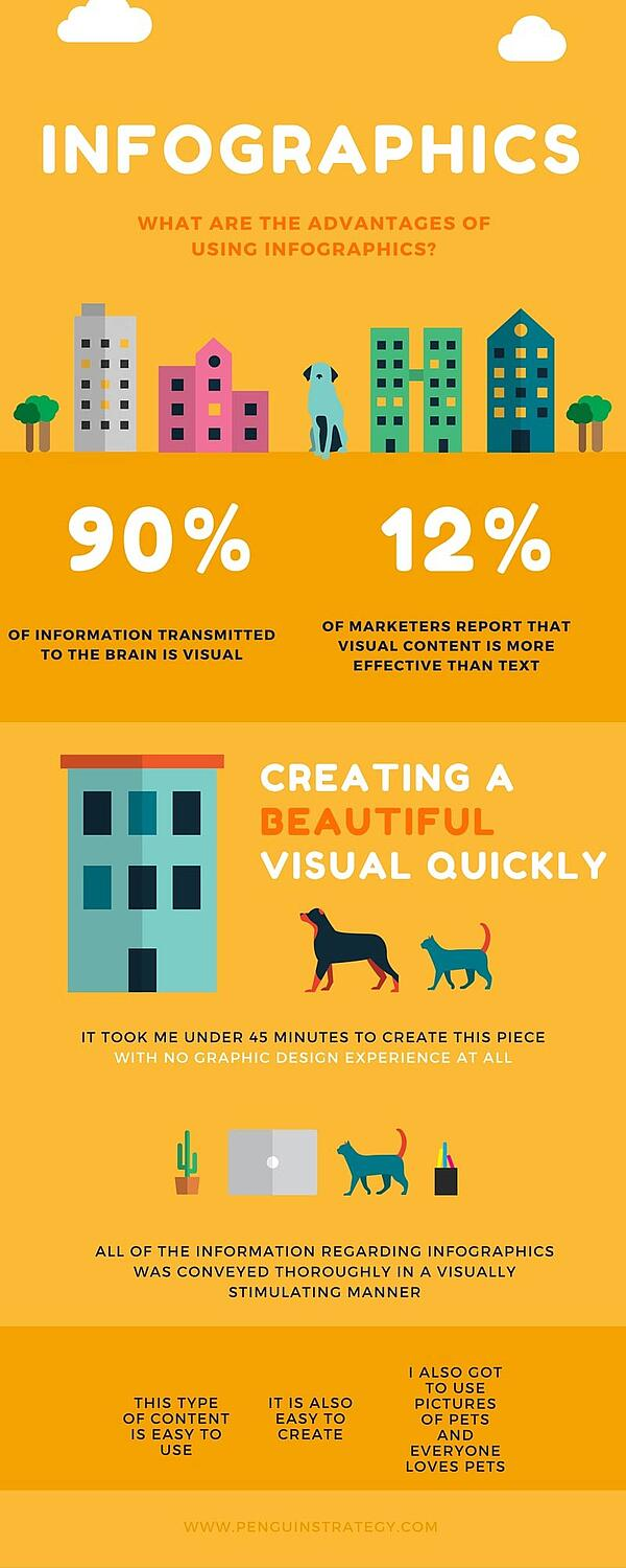 Canva infographics