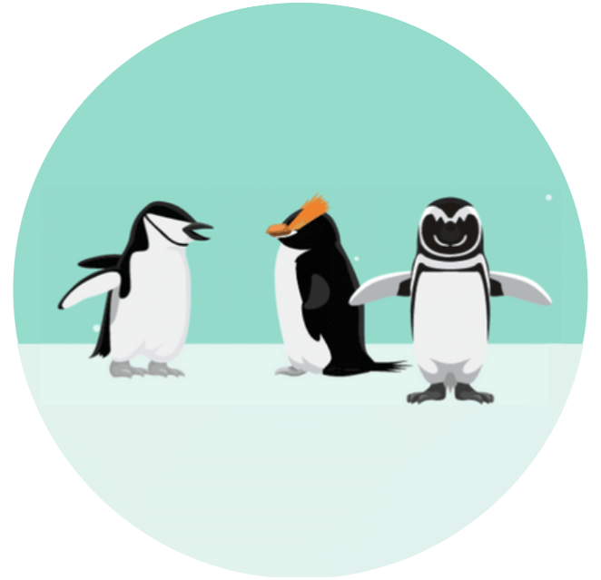The Penguin Team