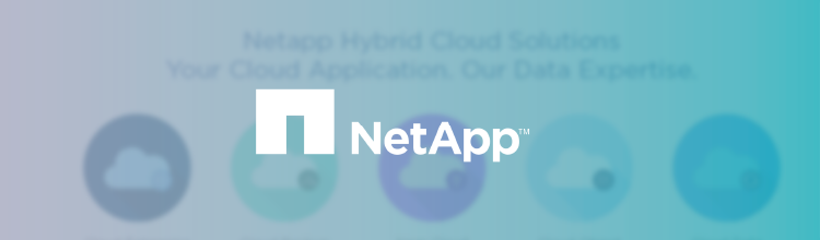 NetApp Background