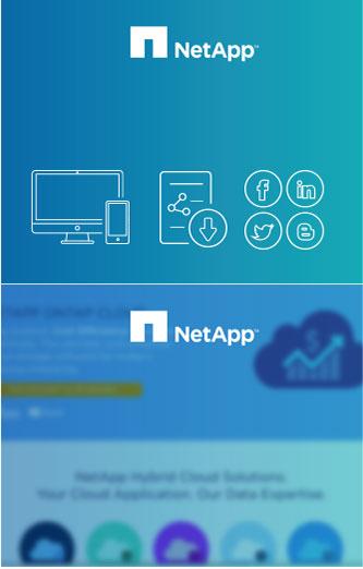 NetApp - Portfolio - Penguin Strategies